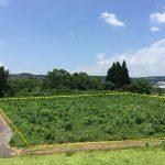 高鍋町/土地/分譲地・アパート用地・グループホーム用地①