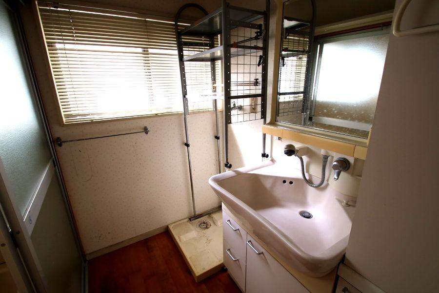 ハンドシャワーの付いた洗面台。